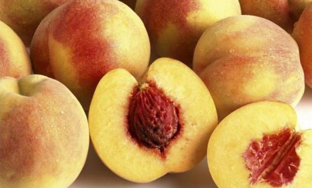 meyve çekirdeği, çocukları meyve çekirdeklerinden koruma, meyve çekirdeklerine dikkat